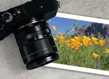 Enter the Highroads Photo Contest